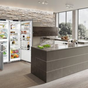 SBSes 8473 Premium BioFresh NoFrost Side-by-Side Combination